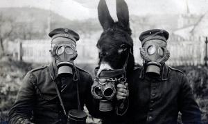 Безумие ядерной войны
