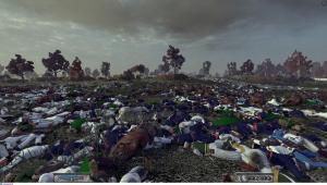 поле после битвы